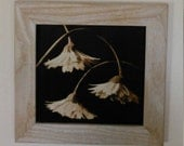Woodburn, Pyrography Art Trio of Drooping blooms, graceful daisys, art in frames