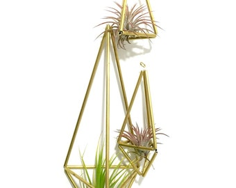 Himmeli Brass Gold  Airplant Holder Cradle Sling Hanging Planter Display for Air Plant READY TO SHIP