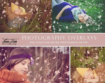 SALE Photography Spring Petals Overlays, Bloom Photo Overlays, INSTANT DOWNLOAD