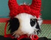 Guinea pig Devil Hat, Guinea pig clothes, Crocheted Devil Horn Hat,for Bearded Dragon, Tiny pet Costume, Halloween Guinea pig Costume
