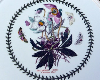 Vintage Portmerion Dinner Plate - Christmas Roes, Flowers and Butterfly, England - 1970's -Gorgeous