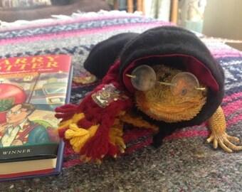Harry Potter modeled by Ryu a Bearded Dragon.