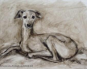 Italian Greyhound original painting
