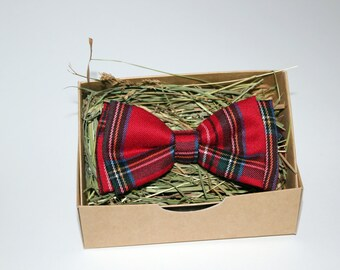 Handmade red striped bow tie