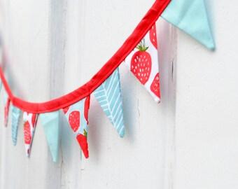 Mini Summer Strawberry Aqua Pennant Banner