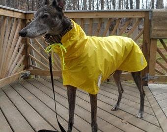 Hound Raincoat