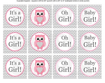 Girl Owl Baby Shower Decorations Cupcake Topper Owl Baby Shower decor (547) - instant download