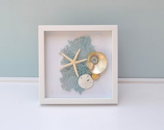 Nautical Decor, Beach Wedding Gift, Beach Decor, Shell Shadow Box, Seafan Shadow Box, Seashell Frame, Coastal Decor, Anniversary Gift