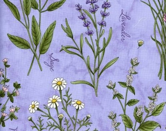 Lavender botanical herbs quilting fabric by Maywood.
