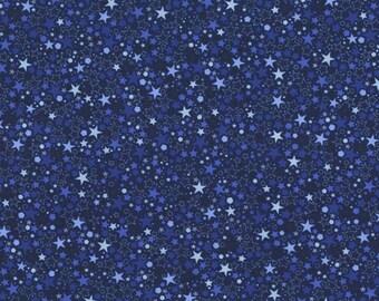 RJR Patrick Lose Basically Patrick Blue Stars fabric 2035-004 BTY