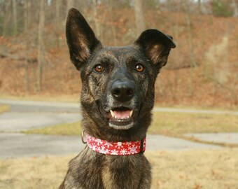 Snowflake Dog Collar, Red Dog Collar, Christmas Holiday Collar, Designer Dog Accessories, Pet Accessories, Adjustable Fabric Dog Collar