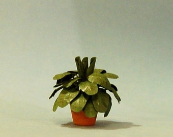 1 inch scale miniature-Prayer Plant