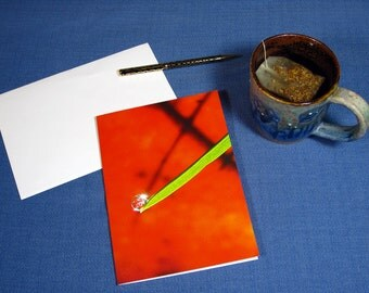 Water drop on blade of grass, red and green, Christmas Card, Nature cards,, card with poem, colorful art cards, The Poetry of Nature
