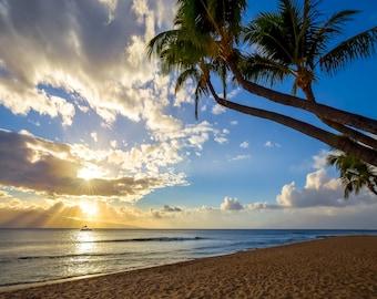 Maui Hawaii Sunset Photo - Beautiful Paradise Beach Photograph from the Hawaiian Island of Maui - Palm Trees - Sand - Ocean - Sunset