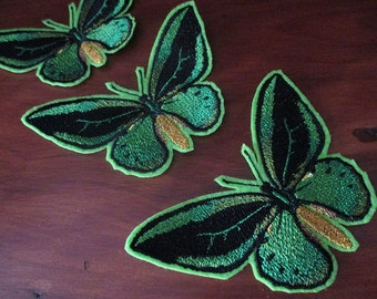 Birdwing butterfly iron on applique patch