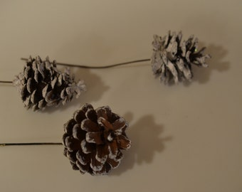 Vintage acorn decorations with white 'snow/frost' on them, on wire sticks for crafts/plants/gardening