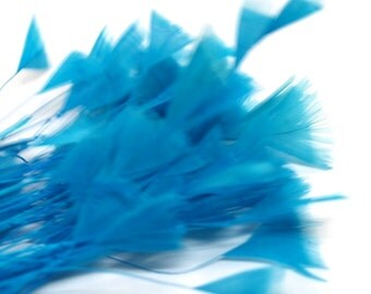 80pc x Bulk Millinery Feathers - Turquoise