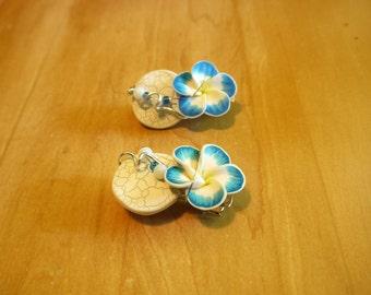 Kit of 2 blue hair clips