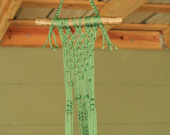 Sage Macrame Plant Hanger with Maple Branch