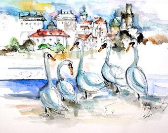 PRAGUE  Art. Prague Swans. View of Prague. Czech Republic. Original watercolor
