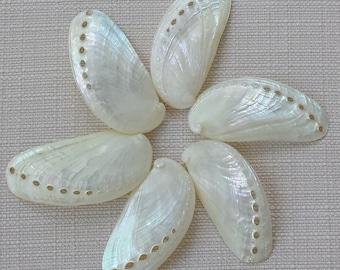 Pearl Abalone, Abalone Shells, Beach Decor, Seashells, Shells, Craft Shells, Pearl Shells, Wedding Shells, Polished Shells,Nautical Decor