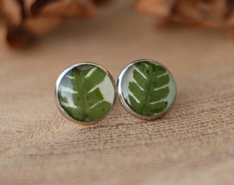 Stud earrings green fern real leaves dried flower green earrings resin earrings jewelry herbarium botanical jewelry flower laconic forest