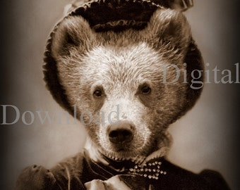 Mrs. Bear Digital Download Photo