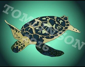 Sea turtle Sea turtle Sea turtle Sea turtle Sea turtle Sea turtle Sea turtle Sea turtle Sea turtle Sea turtle Sea turtle Sea turtle Sea turt