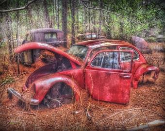 Voltswagon - vw, old car, junk yard, car, antique car, automoble, art, classic car, vw photo, vw photograph, vw photography