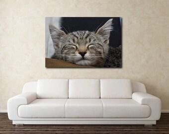 Sleeping grey tabby kitten on canvas print, 100% artist grade canvas, limited edition canvas wall art