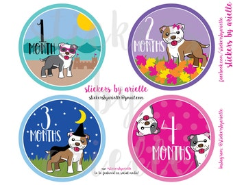 Month by Month Baby Girl Stickers - Pitbull