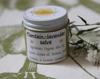 Plantain lavender salve