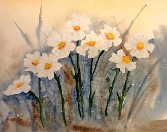 Daisy flowers watercolour art