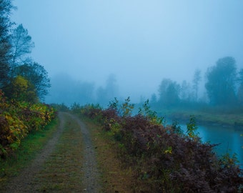 Foggy nature road landscape matte photography print, wall decor
