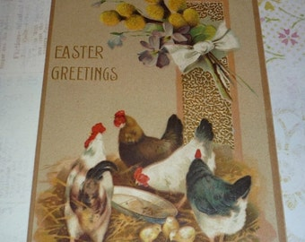 Chickens and Chicks Easter Greetings Antique Postcard