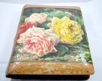 Celluloid Photo Album for CDV and Tintype , Black and White Picture