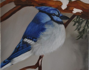 Oil painting Blue Jay