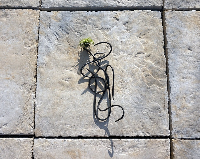 Wrought Iron Air Plant Wall Sculpture, One-of-a-Kind, Dark Textured
