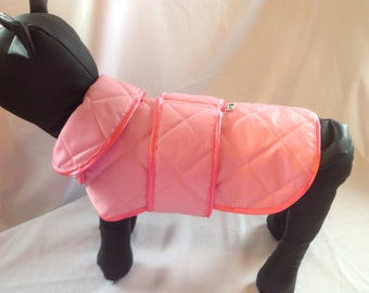 Waterproof dog coats for all small breed dogs