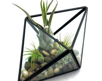 Geometric Double Triangle Terrarium Kit, River Stones, Glass Terrarium