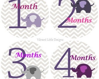 Baby Month Stickers Girl, Milestone Stickers, Month Stickers, Monthly Baby Stickers, Baby Stickers, Elephant #153