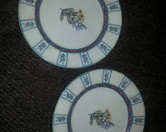 Set of 2 Decorative Plates
