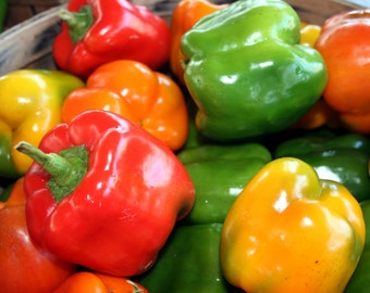 Sweet Pepper Seeds, Bell Pepper Seeds, Carnival Blend Pepper Seeds, Pepper seeds, Red peppers, Green peppers, Multi Color Peppers