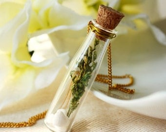 Bottle / necklace / green / Terrarium jewelry, Natural Dried Flower, Real Flower Necklace, botanical jewelry, gift for her, Plant Necklace