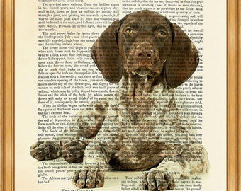German Shorthaired Pointer, Beautiful Dog Art Print on Upcycled Dictionary Book page 8'' x 10'' inches
