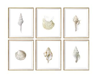 Spa Decor, shabby chic beach decor, beach art, seashell art, seashell prints set, beach house decor, bathroom decor, bathroom art prints, 6
