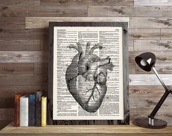 Human Heart Print, Heart Art Print, Human Anatomy Poster, Dictionary Art, Anatomy Print, Heart Anatomy, Heart Wall Art, Wall Decor, 468