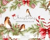 Watercolor Christmas ClipArt Handpainted Winter Intant Download Digital Bird Decoration Evergreen Red Green DIY Seasonal Invitation Original