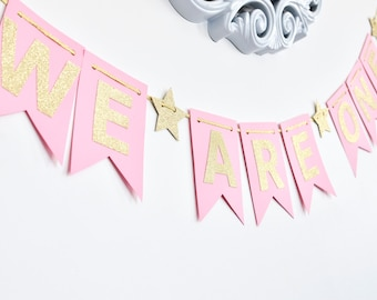 We Are/I Am ONE Banner, Pink and Gold, Birthday Banner, Photo Prop, First Birthday