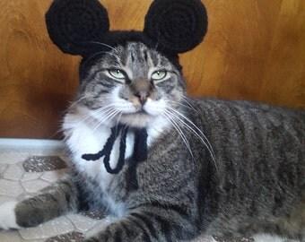 Boy Mouse Ears Cat Hat, Knit Hat for Cat